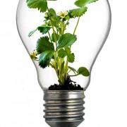 Ahorrar en las facturas de energía